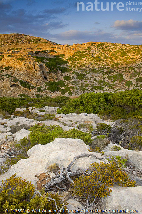 Rock strewn landscape with ruins, evening light, Antikythera island, Greece, September 2008, BUILDINGS,EUROPE,GREECE,LANDSCAPES,ROCKS,RUINS,STEFANO UNTERTHINER,VERTICAL,WWE, Wild Wonders of Europe / Unterthiner