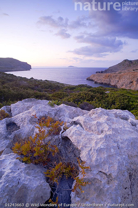 Coast, Antikythera island, Greece, September 2008, CLIFFS,COASTS,DUSK,EUROPE,GREECE,LANDSCAPES,MEDITERRANEAN,ROCKS,SEA,STEFANO UNTERTHINER,VERTICAL,WWE,Geology, Wild Wonders of Europe / Unterthiner