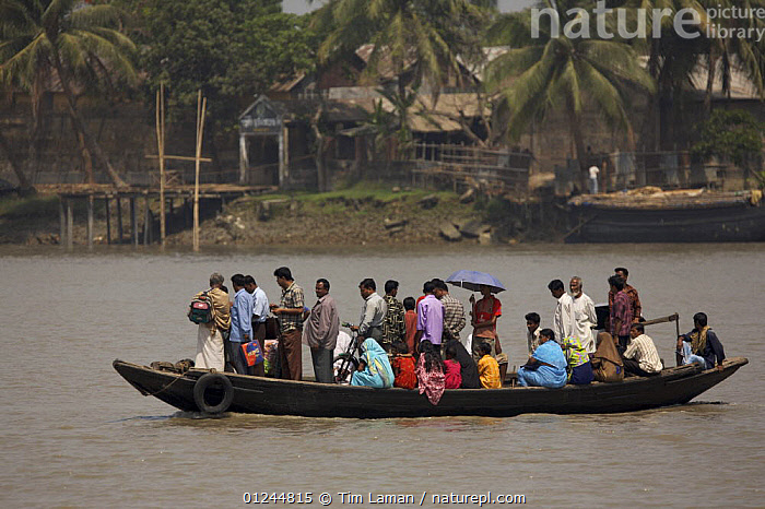 Passenger ferry / shuttle taking people across the Rupsha river at Khulna, Khulna Province, Bangladesh. March 2006, ASIA,BANGLADESH,BOATS,LANDSCAPES,PASSENGER FERRIES,PEOPLE,PROFILE,RIVERS,TRADITIONAL,TRANSPORT,INDIAN-SUBCONTINENT, WORKING-BOATS , WORKING-BOATS, Tim Laman