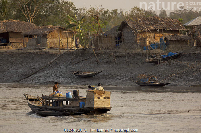 Boat on Sibsa river passing Nolian Village in the Sundarbans, Khulna Province, Bangladesh. March 2006, ASIA,BANGLADESH,BOATS,BUILDINGS,COASTS,PEOPLE,RIVERS,SUNDARBANS,SUNDERBANS,TRADITIONAL,INDIAN-SUBCONTINENT, Tim Laman