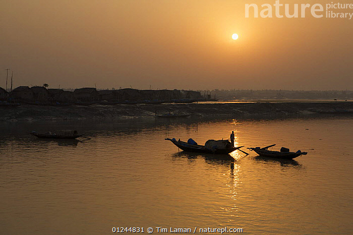 Sunrise over the Sibsa river at Nolian Village with shrimp fry fishing boats, Sundarbans, Khulna Province, Bangladesh, March 2006, ASIA,BANGLADESH,BOATS,COASTS,COMMERCIAL,CRUSTACEANS,INVERTEBRATES,MANGROVES,MANGROVE SWAMPS,MARINE,PEOPLE,SHRIMP FARMING,SHRIMPS,SILHOUETTES,SUN,SUNDARBAN,SUNDARBANS,SUNDERBANS,TRADITIONAL,INDIAN-SUBCONTINENT, Tim Laman