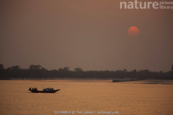 Sunset on the Kholpatura River, Sundarbans, Khulna Province, Bangladesh, March 2006, ASIA,BANGLADESH,BOATS,COASTS,LANDSCAPES,RIVERS,SILHOUETTES,SUN,SUNDARBAN,SUNDARBANS,SUNDERBANS,SUNSET,TRADITIONAL,INDIAN-SUBCONTINENT, Tim Laman