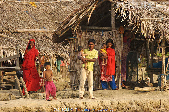 Family in the village of Chandpai on the Passur River, where shrimp fry fishing to supply shrimp for the shrimp ponds is the main industry. Villagers live in simple mud and thatch huts that are washed away by high waters every year. Sunderbans, Khulna Province, Bangladesh, April 2006, ASIA,BANGLADESH,BUILDINGS,COASTS,COMMERCIAL,CRUSTACEANS,INVERTEBRATES,LANDSCAPES,MANGROVE,MANGROVES,MARINE,PEOPLE,RIVERS,SHRIMP FARMING,SHRIMPS,SUNDARBAN,SUNDARBANS,SUNDERBANS,VILLAGES,INDIAN-SUBCONTINENT, Tim Laman