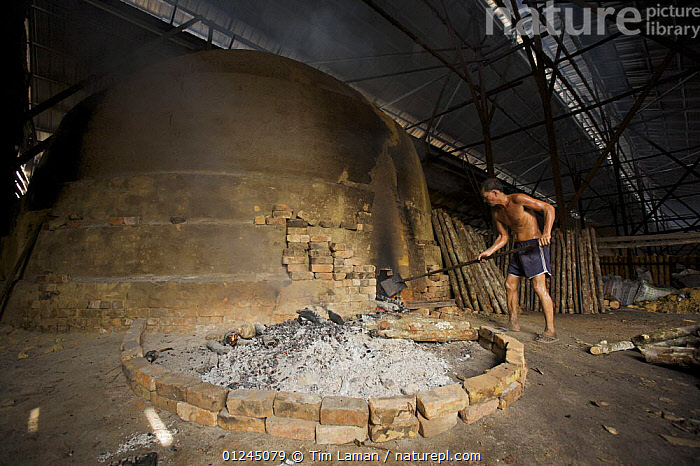 Worker tending the fire of a charcoal kiln. Charcoal production near Taiping, Malaysia, where (Rhizophora apiculata) mangrove wood from the Matang Mangroves is used to produce charcoal using traditional methods. Taiping vicinity, Perak, Malaysia. May 2006, ASIA,CHARCOAL,COASTS,COMMERCIAL,FIRE,FUEL,INDOORS,LANDSCAPES,MALAYSIA,MANGROVE,MANGROVES,MANGROVE SWAMPS,PEOPLE,WORKING, Tim Laman