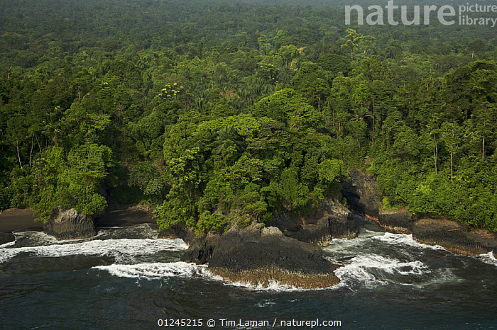 Aerial view of the southern coast of Bioko Island, Equatorial Guinea, Central Africa. January 2008, AERIALS,CENTRAL AFRICA,COASTS,ILCP,LANDSCAPES,RAVE,TROPICAL RAINFOREST,Africa,WEST-AFRICA, Tim Laman
