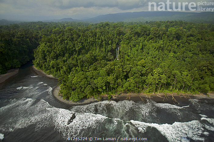 Aerial view of the south coast of Bioko Island, Equatorial Guinea, Central Africa, January 2008, AERIALS,CENTRAL AFRICA,COASTS,ILCP,LANDSCAPES,RAVE,SURF,TROPICAL RAINFOREST,WAVES,Africa,WEST-AFRICA, Tim Laman