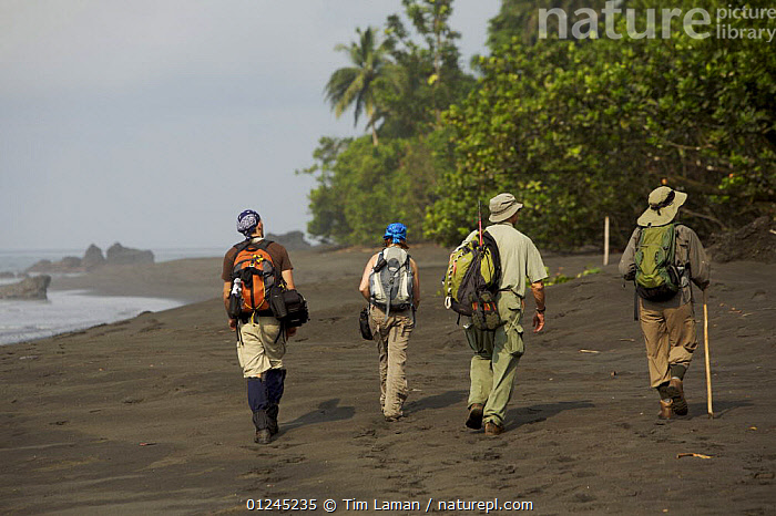 Caldera expedition members hike along the beach on the South coast of Bioko Island, Equatorial Guinea, Rapid Assessment Visual Expedition, International League of Conservation Photographers, January 2008. Model released, BEACHES,CENTRAL AFRICA,COASTS,HIKING,ILCP,LANDSCAPES,PEOPLE,RAVE,RESEARCH,Africa,WEST-AFRICA, Tim Laman