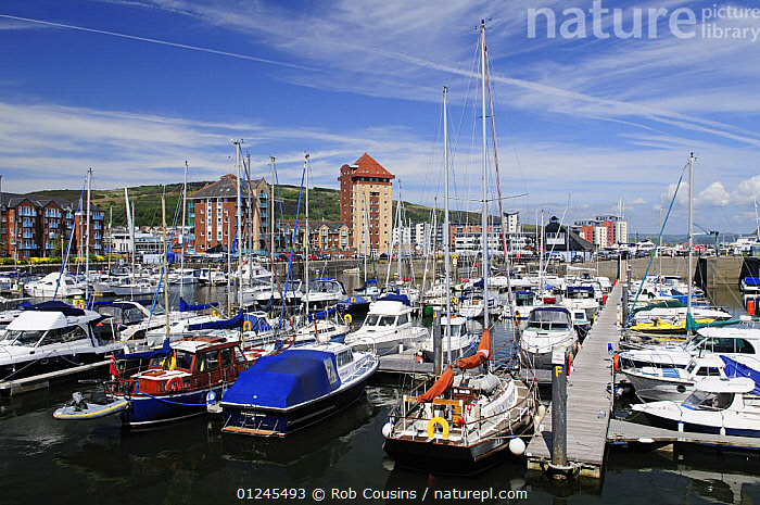The Marina, Maritime Quarter, Swansea, Wales, UK. June 2009., EUROPE,LANDSCAPES,MARINAS,MIXED BOATS,MOORED,TOWNS,UK,WALES,BOATS , United Kingdom, United Kingdom, United Kingdom, Rob Cousins