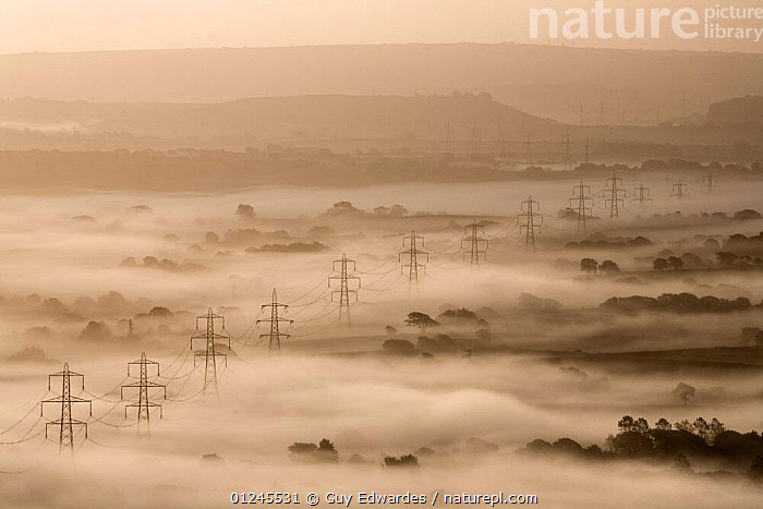 Electricity pylons rising through dawn mist, view of the Marshwood Vale from Lambert's Castle, Dorset, England, September 2008, ATMOSPHERIC,DAWN,ENERGY,ENVIRONMENTAL,EUROPE,HIGH ANGLE SHOT,LANDSCAPES,MIST,UK, United Kingdom, Guy Edwardes