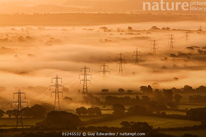 Electricity pylons rising through dawn mist, view of the Marshwood Vale from Lambert's Castle, Dorset, England, September 2008, ATMOSPHERIC,DAWN,ENERGY,ERUOPE,HIGH ANGLE SHOT,LANDSCAPES,MIST,UK,Europe, United Kingdom, Guy Edwardes
