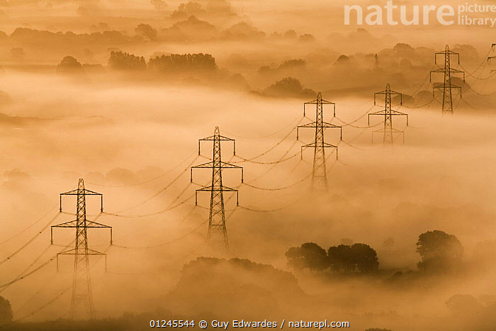 Electricity pylons rising through mist at dawn, view of The Marshwood Vale from Lambert's Castle, Dorset, England, September 2008, COUNTRYSIDE,DAWN,ENERGY,ENVIRONMENTAL,EUROPE,HIGH ANGLE SHOT,LANDSCAPES,MIST,UK, United Kingdom, United Kingdom, United Kingdom,Catalogue1, Guy Edwardes