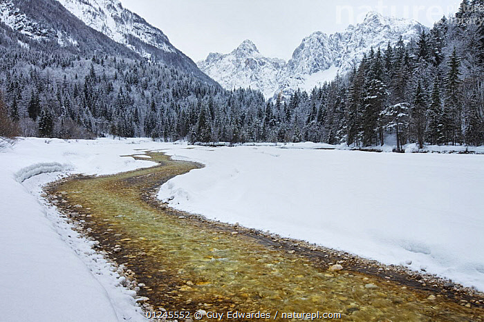 Pisnica River and Visic Pass in winter, Kranjska Gora, Triglav National Park, Julian Alps, Slovenia, March 2009, EUROPE,LANDSCAPES,NP,RESERVE,RIVERS,SNOW,WINTER,National Park, Guy Edwardes