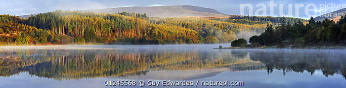 Llwyn-on reservoir, Merthyr Tydfil, Brecon Beacons National Park, Wales, UK, autumn, AUTUMN,CALM,EUROPE,LAKES,LANDCAPES,MIST,NP,PANORAMIC,PEACEFUL,REFLECTIONS,RESERVE,UK,WALES,WATER,WEATHER ,National Park,Concepts, United Kingdom, United Kingdom, Guy Edwardes