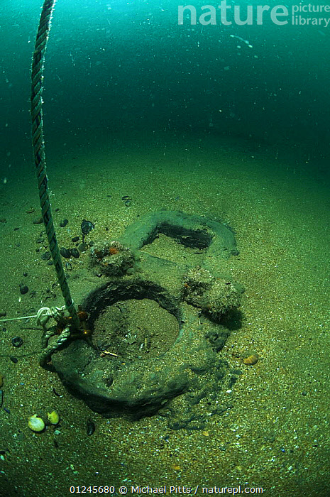 Step (part of the ship's mast, where one section is joined to the next) of an unknown wreck off the south coast, UK. September 2009.  ,  BOAT PARTS,BOATS,EUROPE,MARINE,MASTS,SEA BED,TEMPERATE,UK,UNDERWATER,VERTICAL,WRECKS,BOAT-PARTS, United Kingdom, United Kingdom, United Kingdom, United Kingdom, United Kingdom  ,  Michael Pitts