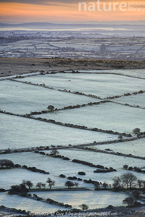 View of frost covered fields and hedgerows in the Preseli Hills, Pembrokeshire Coast National Park, Pembrokeshire, Wales, UK, November 2008, EUROPE,EXTENSIVE,FARMLAND,FROST,LANDSCAPES,UK,VERTICAL,WALES,WINTER,Weather, United Kingdom, Guy Edwardes