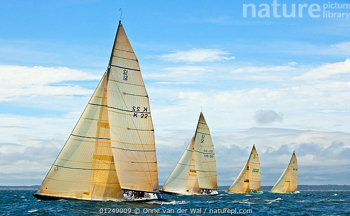 Yachts racing at the 12 Metre World Championships, Newport, Rhode Island, USA. September 2009.  ,  12 METERS,12 METRES,COASTS,FLEETS,METER,NORTH AMERICA,PROFILE,SAILING BOATS,SAILS,USA,YACHTS,BOATS,SAILING-BOATS,core collection xtwox  ,  Onne van der Wal