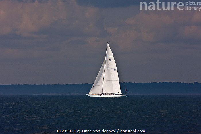 Lone white yacht at the 12 Metre World Championships, Newport, Rhode Island, USA. September 2009.  ,  12 METERS,12 METRES,ALONE,ATMOSPHERIC,COASTS,METER,NORTH AMERICA,PROFILE,SAILING BOATS,USA,YACHTS,BOATS,SAILING-BOATS,CONCEPTS  ,  Onne van der Wal