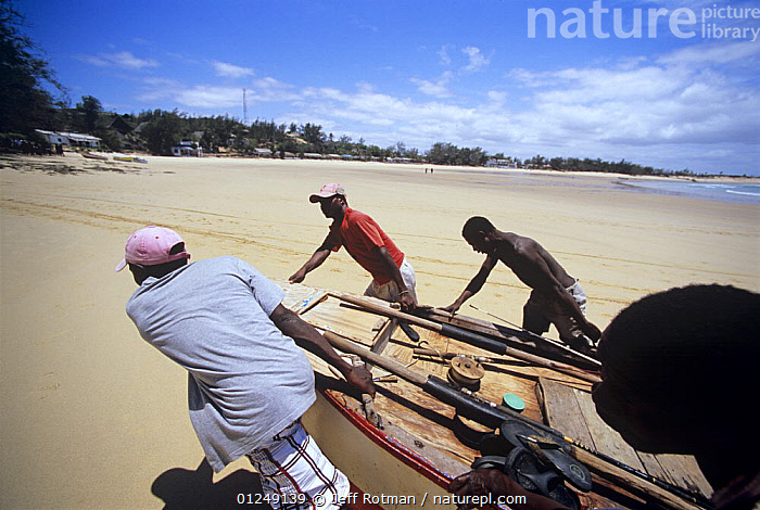 Fishermen drag rowing boat up the beach on return from a day of line fishing, Tofo, Mozambique, November 2008  ,  BEACHES,BOATS,COASTS,DRY LAND,FISH,FISHERMAN,FISHERMEN,FISHING,HAULING,LANDSCAPES,PEOPLE,PULLING,SOUTHERN AFRICA,TRADITIONAL,TROPICAL  ,  Jeff Rotman