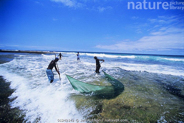 Fishermen using a hand net to catch shrimp, Vilankulo, Mozambique, November 2008  ,  BEACHES,COASTS,CRUSTACEANS,FISHING,INVERTEBRATES,LANDSCAPES,PEOPLE,SHALLOWS,SHRIMPS,SURF,TRADITIONAL,WAVES,SOUTHERN AFRICA  ,  Jeff Rotman