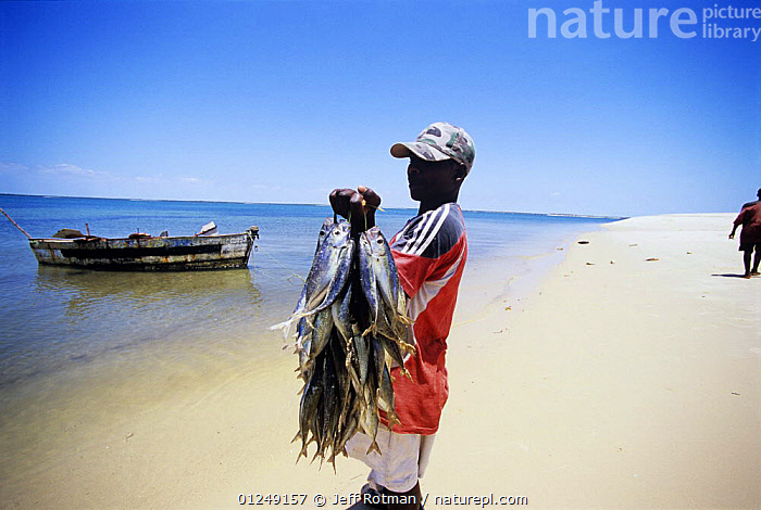 Fisherman bringing fish catch home, Inhassoro, Mozambique, November 2008  ,  BEACHES,BOATS,COASTS,FISHERMEN,FISHING,HOLDING,LANDSCAPES,MAN,PORTRAITS,SOUTHERN AFRICA,TRADITIONAL,YOUNG,PEOPLE  ,  Jeff Rotman