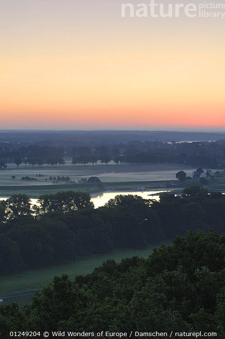 Elbe River at sunrise, Elbe Biosphere Reserve, Lower Saxony, Germany, July 2008  ,  DIETER DAMSCHEN,EUROPE,GERMANY,LANDSCAPES,RIVERS,SUNRISE,TREES,VERTICAL,WWE,PLANTS  ,  Wild Wonders of Europe / Damschen