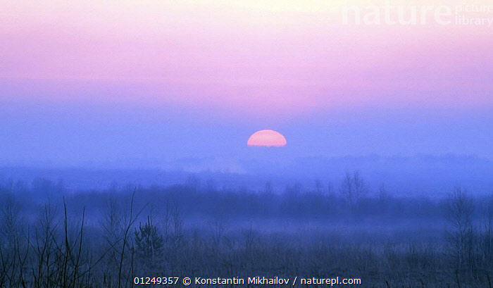 """Sun rising over the Craneland reserve, Moscow Oblast, Russia, May  ,  """"??????????,??????"""",ATMOSPHERIC,DAWN,EUROPE,LANDSCAPES,RESERVE,RUSSIA,SPRING,SUN,SUNRISE  ,  Konstantin Mikhailov"""