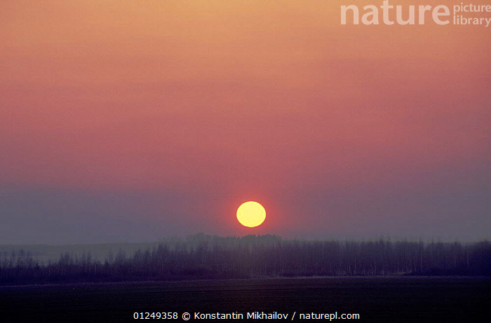 """Sun rising over the Craneland reserve, Moscow Province, Russia, May  ,  """"??????????,??????"""",ATMOSPHERIC,DAWN,EUROPE,LANDSCAPES,ORANGE,RESERVE,RUSSIA,SUN,SUNRISE  ,  Konstantin Mikhailov"""