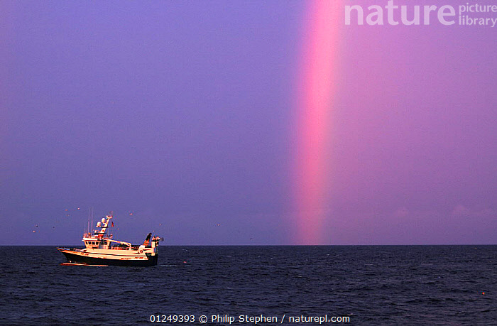 """Fishing vessel """"Ocean Harvest"""" and rainbow on the North Sea at dawn, July 2009. Property Released.  ,  BOATS,DAWN,EUROPE,FISHERIES,FISHING BOATS,North Sea,PROFILE,RAINBOWS,TRAWLERS,WEATHER, WORKING-BOATS , WORKING-BOATS , WORKING-BOATS  ,  Philip Stephen"""