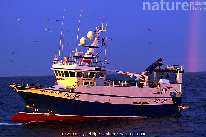 """Fishing vessel """"Ocean Harvest"""" and rainbow on the North Sea at dawn, July 2009. Property Released.  ,  BOATS,DAWN,EUROPE,FISHERIES,FISHING BOATS,North Sea,RAINBOWS,TRAWLERS,Weather, WORKING-BOATS , WORKING-BOATS , WORKING-BOATS  ,  Philip Stephen"""