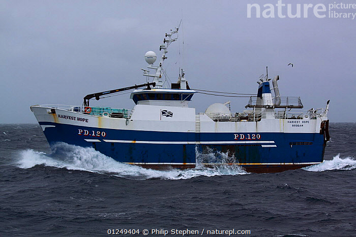 """Peterhead registered stern trawler """"Harvest Hope"""" heading for the North Sea fishing grounds. September 2009.  ,  BOATS,CHOPPY,EUROPE,FISHERIES,FISHING BOATS,North Sea,PROFILE,TRAWLERS, WORKING-BOATS , WORKING-BOATS  ,  Philip Stephen"""