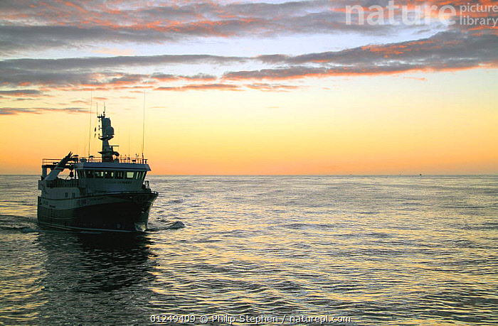 North Sea trawler at dawn, September 2009. Property released.  ,  BOATS,CALM,DAWN,EUROPE,FISHERIES,FISHING BOATS,North Sea,SILHOUETTES,SUNRISE,TRAWLERS, WORKING-BOATS , WORKING-BOATS , WORKING-BOATS  ,  Philip Stephen