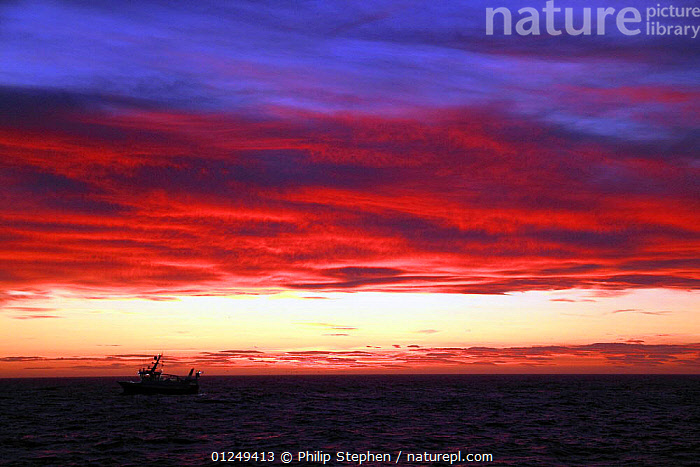 Trawler at dusk on the North Sea, September 2009.  ,  ALONE,BOATS,CLOUDS,DUSK,EUROPE,FISHERIES,FISHING BOATS,NIGHT,North Sea,PINK,PROFILE,SILHOUETTES,SKY,SMALL,SUNSET,TRAWLERS,CONCEPTS,Weather, WORKING-BOATS , WORKING-BOATS ,SIZE  ,  Philip Stephen