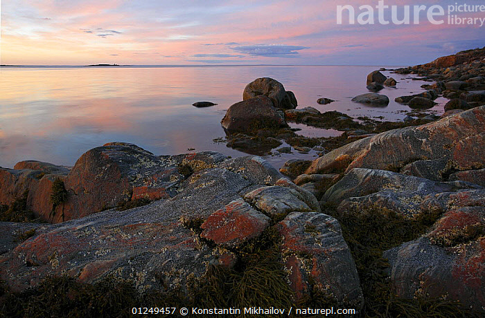 Inlet shore of the White Sea, Karelia, N Russia in the midnight sun, July 2008  ,  CALM,COASTS,EUROPE,LANDSCAPES,NIGHT,PEACEFUL,ROCKS,RUSSIA,SUNRISE,Concepts,CIS  ,  Konstantin Mikhailov