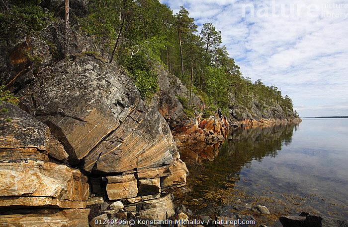 Rocky shore of an inlet of the White Sea, Karelia, N Russia, July 2009  ,  CLIFFS,COASTS,EUROPE,LANDSCAPES,ROCKS,RUSSIA,Geology,CIS  ,  Konstantin Mikhailov
