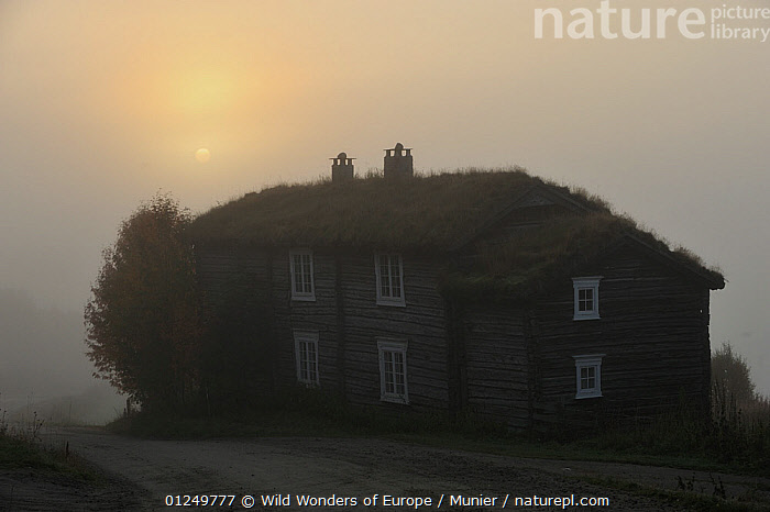 Traditional farm house, with grass roof, in mist, Forollhogna National Park, Norway, September 2008  ,  BUILDINGS,EUROPE,farms,HOMES,LANDSCAPES,MIST,NORWAY,NP,RESERVE,SCANDINAVIA,TRADITIONAL,TUNDRA,vincent munier,WWE, Scandinavia,National Park  ,  Wild Wonders of Europe / Munier