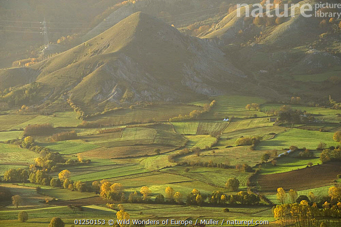 Cultivated fields in valley, Pollino National Park, Basilicata, Italy, November 2008  ,  AGRICULTURE,CLAUDIA M�LLER,EUROPE,HILLS,ITALY,LANDSCAPES,NP,RESERVE,TREES,VALLEY,WWE,National Park,PLANTS  ,  Wild Wonders of Europe / Müller