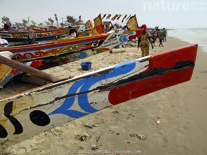 Painted bow of traditional fishing boat, Kafountine, Casamance region, Senegal. April 2008.  ,  AFRICA,BOATS,BOWS,COASTS,COLOURFUL,DRY LAND,FLEETS,INTERESTING,MS,PAINTED,PEOPLE,TRADITIONAL,WEST AFRICA,WOODEN  ,  Tom Gilks