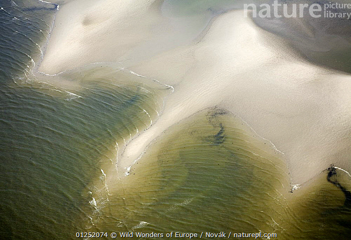 Aerial view of Hallig coastal landscape, Germany, April 2009  ,  AERIALS,COASTS,EUROPE,GERMANY,LANDSCAPES,L�szl� Nov�k,sand,sea,wadden sea,WWE  ,  Wild Wonders of Europe / Novák