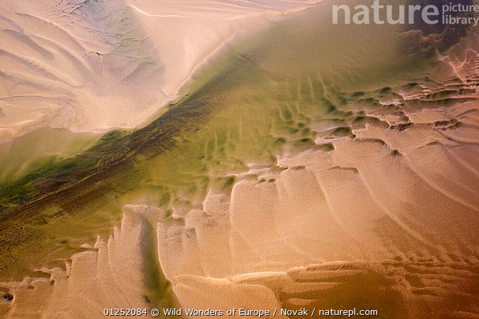 Aerial view of water channel in the sand, Hallig, Germany, April 2009  ,  AERIALS,COASTS,EUROPE,GERMANY,LANDSCAPES,L�szl� Nov�k,sand,Tidal,wadden sea,WATER,WWE  ,  Wild Wonders of Europe / Novák