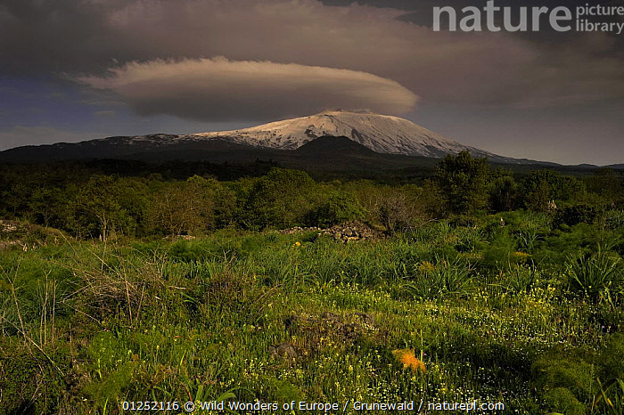 Western side of Mount Etna volcano, Sicily, Italy, May 2009  ,  Active,CLOUDS,EUROPE,ITALY,LANDSCAPES,Olivier Grunewald ,SICILY,SNOW,VOLCANOES,WWE,Weather,Geology  ,  Wild Wonders of Europe / Grunewald