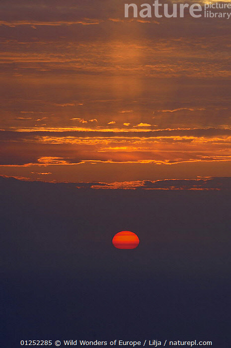 Sunset viewed from Moutti tis Sotiras mountain, Akamas Peninsula, Cyprus, April 2009  ,  CLOUDS,CYPRUS,EUROPE,LANDSCAPES,Peter Lilja,RED,SUN,SUNSET,VERTICAL,WWE,Weather  ,  Wild Wonders of Europe / Lilja