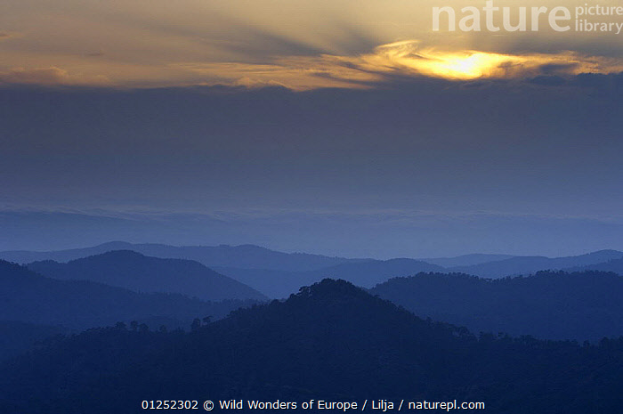 Landscape in Troodos mountains, Cyprus, April 2009  ,  ATMOSPHERIC,BLUE,CYPRUS,EUROPE,FORESTS,LANDSCAPES,MOUNTAINS,Peter Lilja,WWE,TRODOS  ,  Wild Wonders of Europe / Lilja