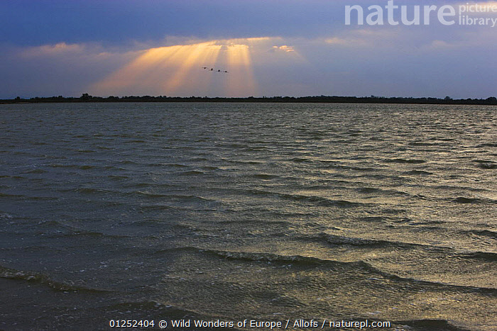 Lagoon, Etang du Fangassier in stormy weather, Camargue, France, May 2009  ,  EUROPE,FRANCE,lagoons,LAKES,LANDSCAPES,RAYS,Sunshine,Theo Allofs,WAVES,WETLANDS,WWE  ,  Wild Wonders of Europe / Allofs