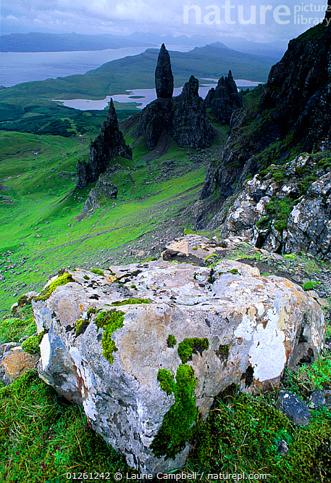 Pinnacles of Old Man of Stoer, Isle of Skye, Scotland, June  ,  CATALOGUE2,COUNTRYSIDE,elevated view,EUROPE,HIGHLANDS,isle of skye,LANDSCAPES,MOUNTAINS,Natural Landmark,Nobody,Old Man of Stoer,outdoors,Pinnacle,rock,rock formation,ROCK FORMATIONS,SCOTLAND,SUMMER,UK,VERTICAL,United Kingdom,core collection xtwox  ,  Laurie Campbell