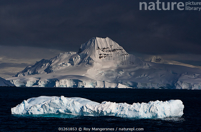 Iceberg in front of Brabant Island seen from the Gerlach Strait, Antarctica. November.  ,  COASTS,ICE,ICEBERGS,LANDSCAPES,MOUNTAINS,SEA,SNOW  ,  Roy Mangersnes