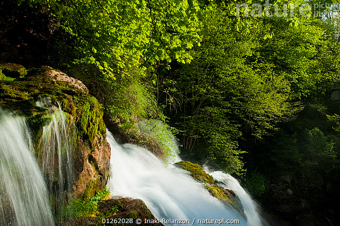The Fountains of the river Llobregat, Pyrenees, Bergued�, Catalonia, Spain. May 2009  ,  EUROPE,LANDSCAPES,RIVERS,ROCKS,SPAIN,WATERFALLS,WOODLANDS  ,  Inaki Relanzon