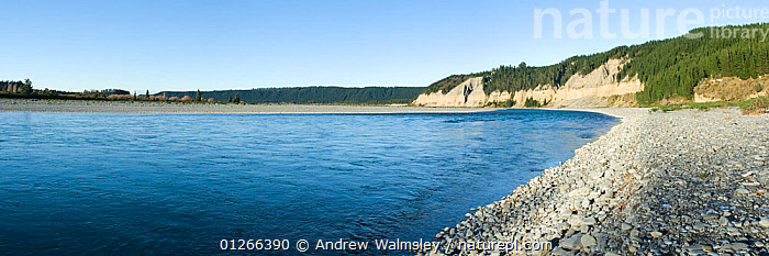 Rakaia River flowing through Rakaia Gorge, Canterbury, New Zealand, June 2008  ,  CLIFFS,FORESTS,LANDSCAPES,NEW ZEALAND,PANORAMIC,RIVERS,Geology  ,  Andrew Walmsley