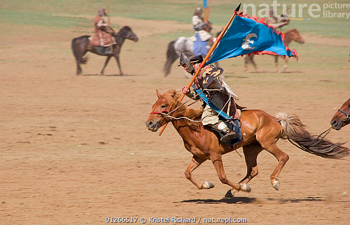 Re-enactement of an attack by the mounted armies of Genghis Khan (emperor of the Mongol Empire) during the Genghis Khan Show, in Ulaanbaatar, Mongolia. The horses are Mongolian horses. July 2007  ,  ASIA,CHINGGIS,FLAGS,GALLOPING,GROUPS,HISTORICAL,HORSE,HORSES,KHAAN,LANDSCAPES,MONGOLIA,PEOPLE,RIDING,TRADITIONAL  ,  Kristel Richard