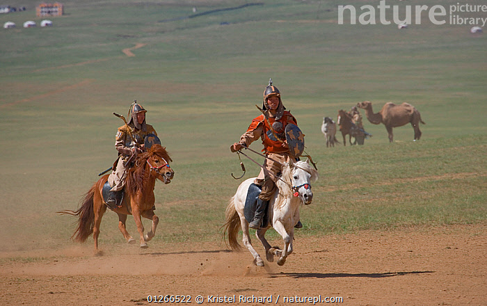 Two mounted soldiers from the armies of Genghis Khan (emperor of the Mongol Empire) during the Genghis Khan Show, in Ulaanbaatar, Mongolia. The horses are Mongolian horses. July 2007  ,  ASIA,CHINGGIS,GALLOPING,HISTORICAL,HORSE,HORSES,KHAAN,LANDSCAPES,MONGOLIA,PEOPLE,RIDING,TRADITIONAL,TWO  ,  Kristel Richard