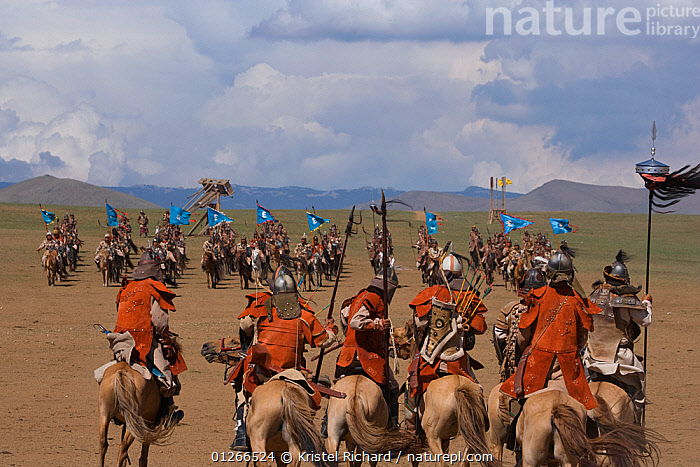 Re-enactement of an attack by the mounted armies of Genghis Khan (emperor of the Mongol Empire) during the Genghis Khan Show, in Ulaanbaatar, Mongolia. The horses are Mongolian horses. July 2007  ,  ASIA,FIGHTING,GROUPS,HISTORICAL,HORSE,HORSES,LANDSCAPES,MONGOLIA,PEOPLE,RIDING,TRADITIONAL,Aggression  ,  Kristel Richard